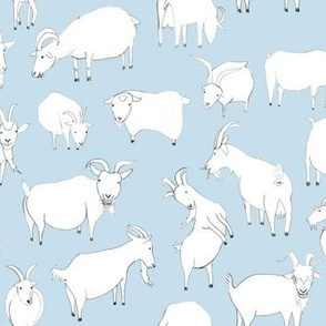Goats Playing - Baby Blue