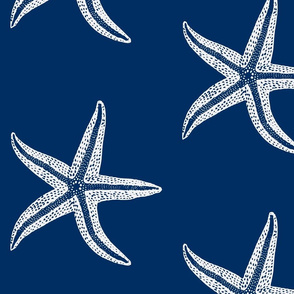 I wish upon a Starfish Blue Inverse