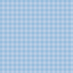 powder blue gingham