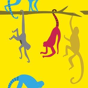 Jungle Monkeys Climbing across Tree branches