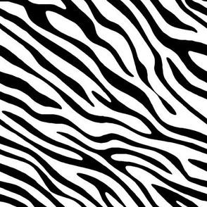 Basic Zebra