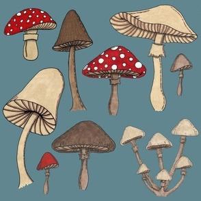 Mushroom Madness