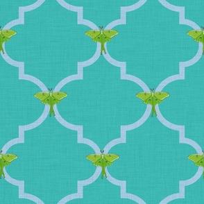 Luna Moth Quatrefoil in Turquoise