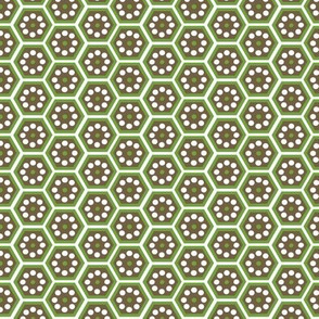 honeycomb green and brown