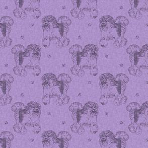 Trotting Lowchen stamps - purple