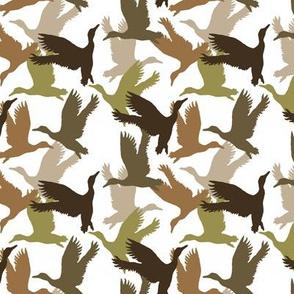 Flying ducks / white