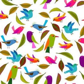 oiseau du paradis M