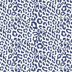 blue leopard on white