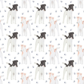 Posing Smooth Fox Terriers watercolor