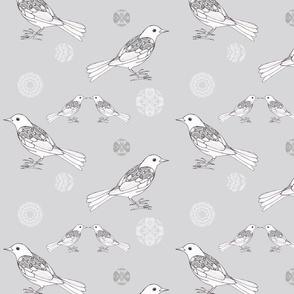 Bird Collection: Blackbird in Love