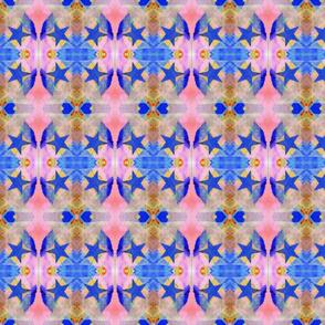 Blue Star rad plaid
