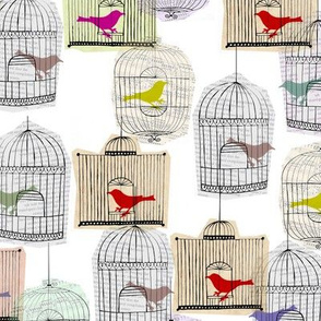 Colourful Birdcages