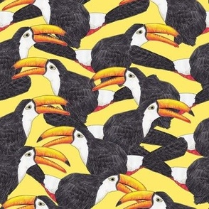 Toucan Yellow