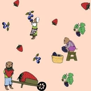 Vole family berry harvest - peach