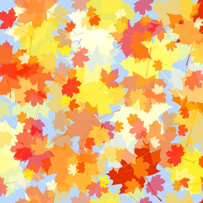 Leaves in the sky