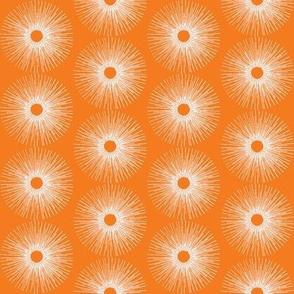 Radiance - orange