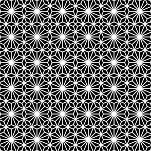 02573233 : S84V1cr : white lace