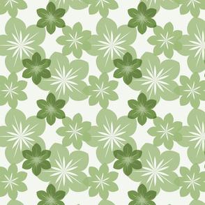 green transparent flower