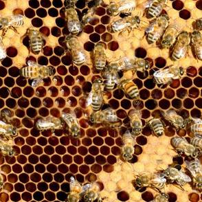 Realistic Bee Hive Fabric Honeybees