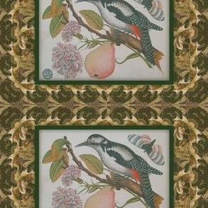Bird pear decoupage