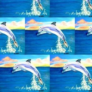 dolphin sunset