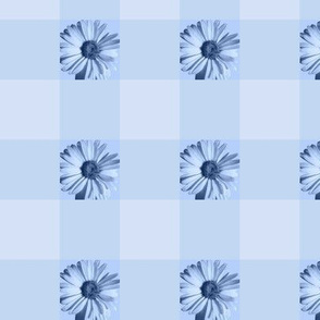 Gingham Daisies - blue