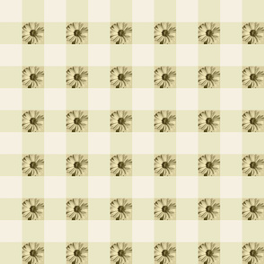 Gingham Daisies - gold