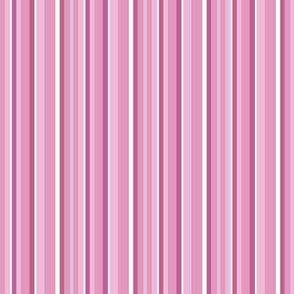 Spring Stripes - rose