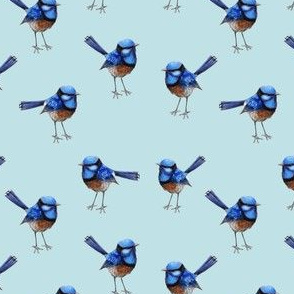 Bright Blue Wren on Soft Blue