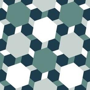 02668539 : R6 E1+V x3 : circus blocks
