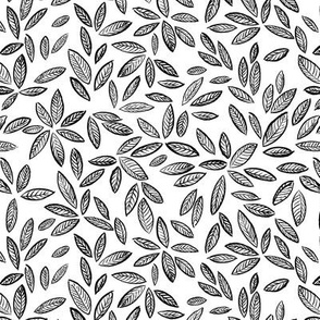 Leaves in black and white
