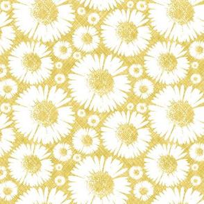 Retro Summer Daisy - Sunshine © Kristopher K  2010