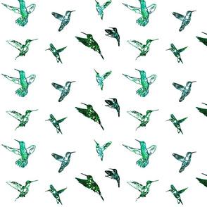 Hummingbirds Teal