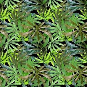Big Leaves Brown/Green (2)