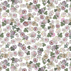English Roses White
