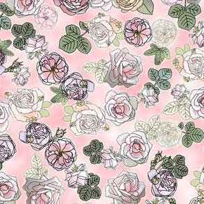 English Roses Pink