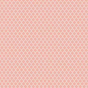 Quatrefoil lattice in pale salmon coral pink