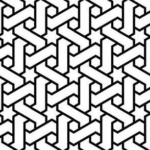 02707691 : R6E1 star weave