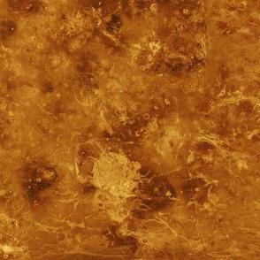 Map of Venus (radar image of the surface)
