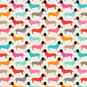 Vintage doxie sausage dogs dachshund illustration pattern girls