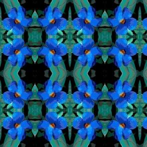 blue_poster_flower