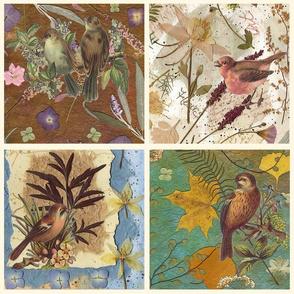 Birds decals