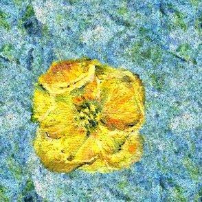 yellow_poppy