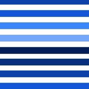 Ombre Blue Stripes
