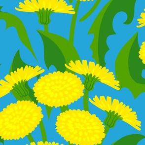 bright dandelions on sky blue