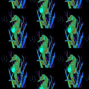 seahorse2lack