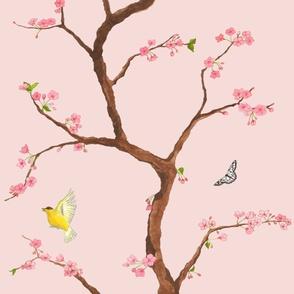 Jenny cherry blossoms on blush