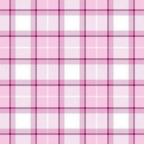 Pink Scot Plaid ©Julee Wood