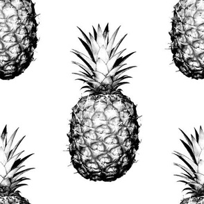 Pineapples black and white large