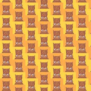 Owl Portrait Orange and Yellow
